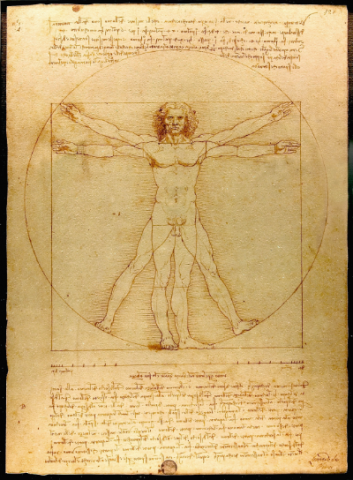 L'uomo vitruviano, studio delle proporzioni del corpo umano.